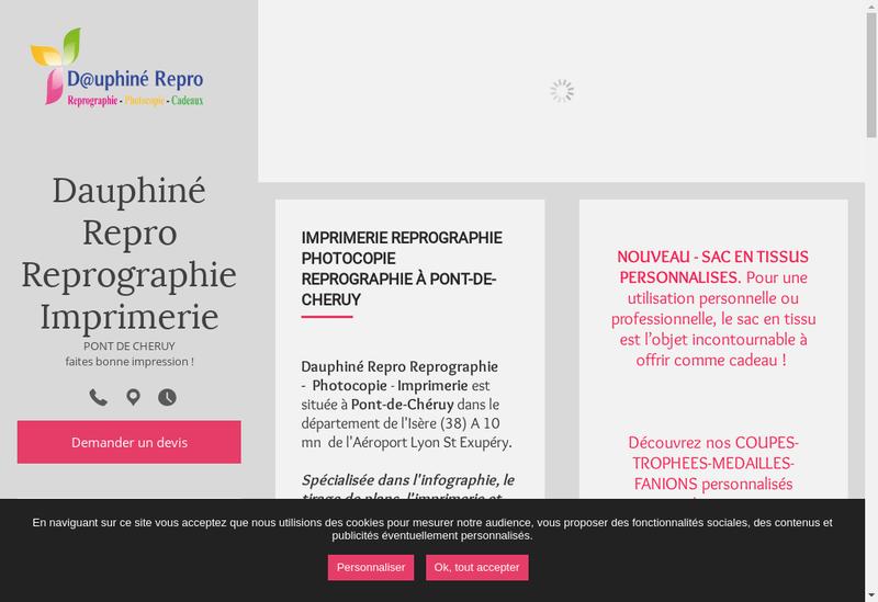 Capture d'écran du site de Dauphine Repro