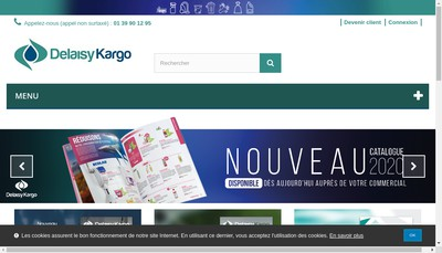 Site internet de Delaisy-Kargo Sztark Vintage