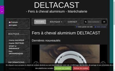 Site internet de Deltacast