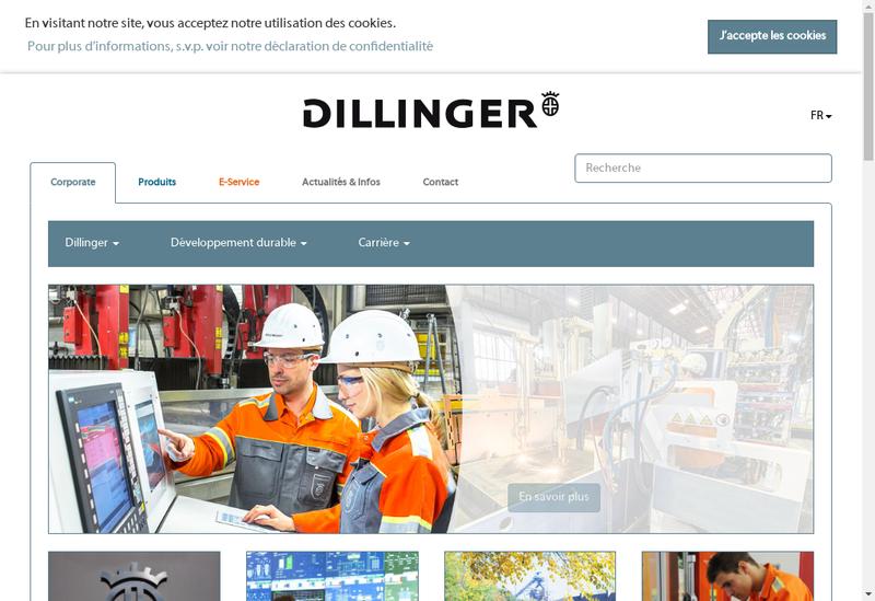 Capture d'écran du site de Dillinger International