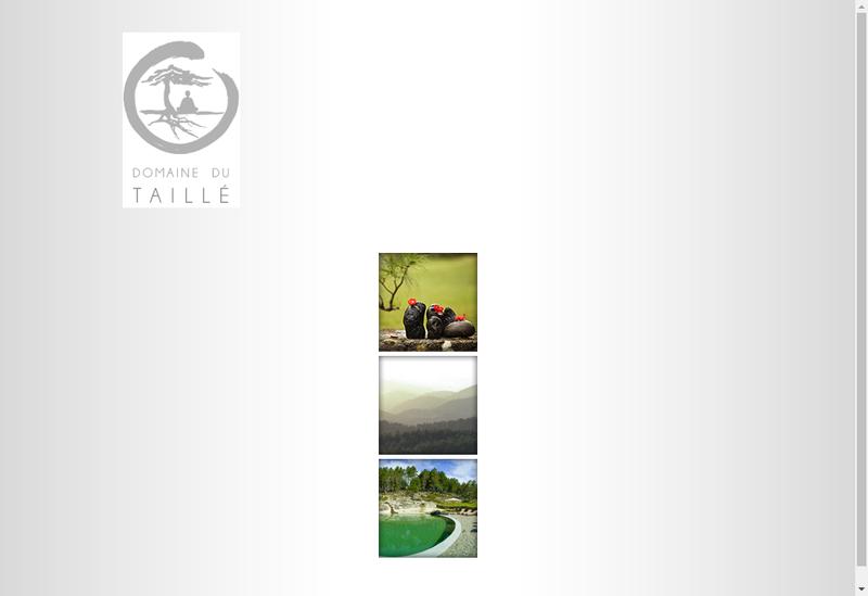 Capture d'écran du site de Domaine du Taille