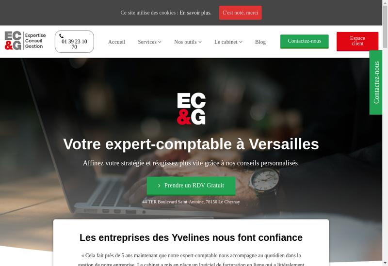 Capture d'écran du site de Ecg Conseils