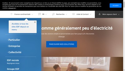 Site internet de Electricite de France