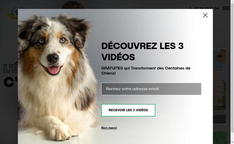 Capture d'écran du site de Educ-Dog