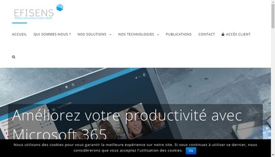 Site internet de Business Euralliance'S