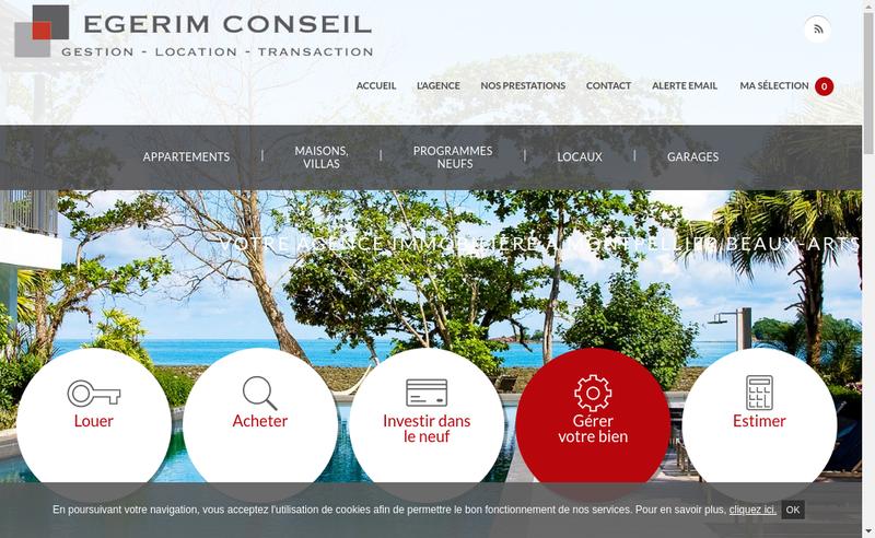 Capture d'écran du site de Egerim Conseil