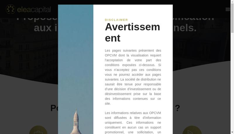 Capture d'écran du site de Satellite Investments