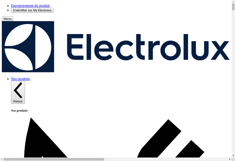 Capture d'écran du site de Electrolux France