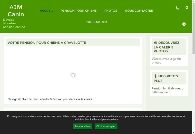 Capture d'écran du site de Ajm Canin
