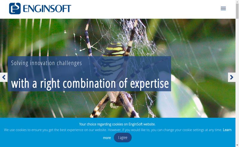 Capture d'écran du site de Enginsoft France