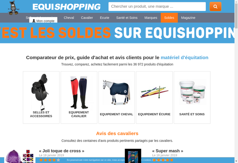 Capture d'écran du site de Equishopping - Equiponi - Equistud