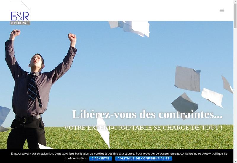 Capture d'écran du site de Eetr Consultants Alsace Franche-Comte Holding