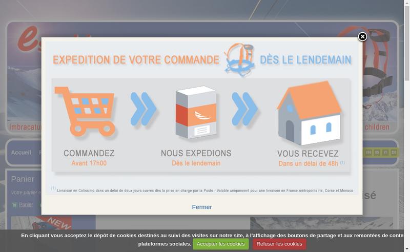Capture d'écran du site de Esyski