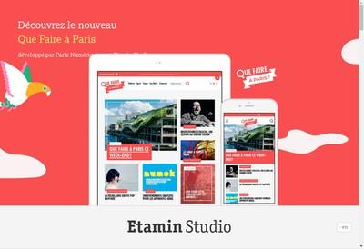 Site internet de Etamin Studio