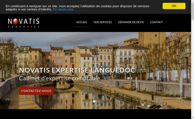 Site internet de Novatis Expertise