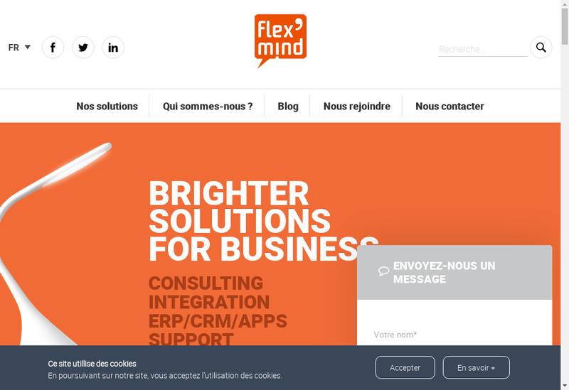 Capture d'écran du site de Flexmind