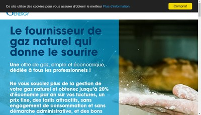 Site internet de Gazprom Marketing & Trading France