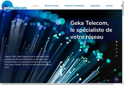 Site internet de Geka