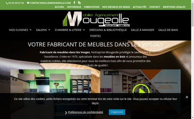Site internet de Meubles Mougeolle