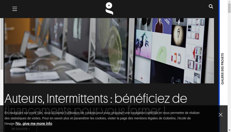 Capture d'écran du site de Gobelins Co