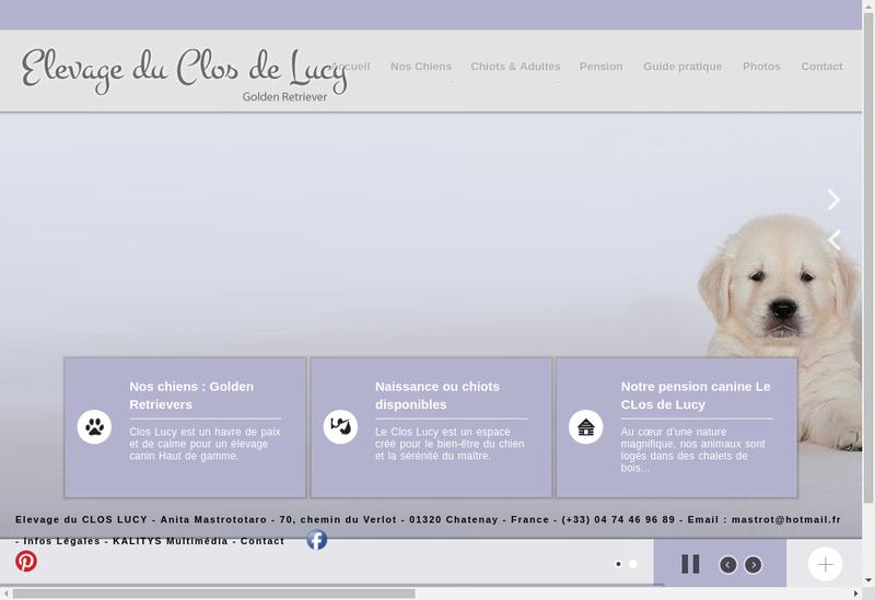 Capture d'écran du site de Anita Mastrototaro