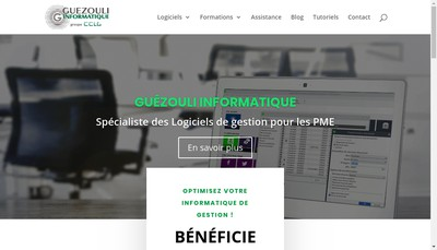 Site internet de Guezouli Informatique
