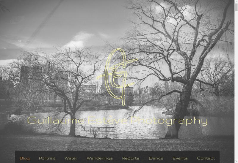 Capture d'écran du site de Guillaume Estève