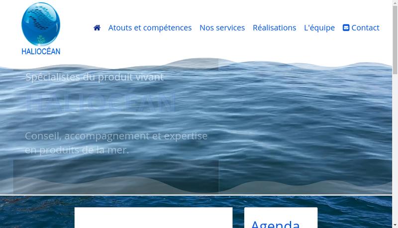 Capture d'écran du site de Haliocean