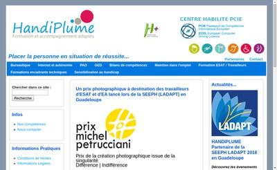 Site internet de Handilibre
