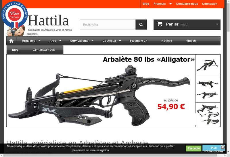 Capture d'écran du site de Hattila