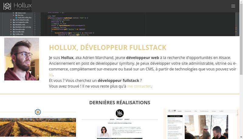Capture d'écran du site de Hollux