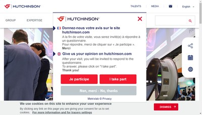 Site internet de Hutchinson Polymers