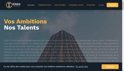 Site internet de IÉSEG Conseil