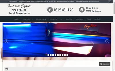 Site internet de Institut Cybele