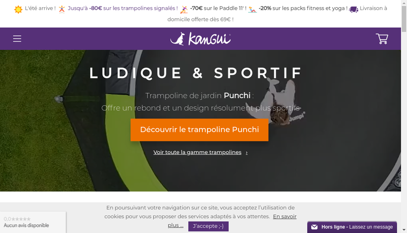 Capture d'écran du site de Kangui