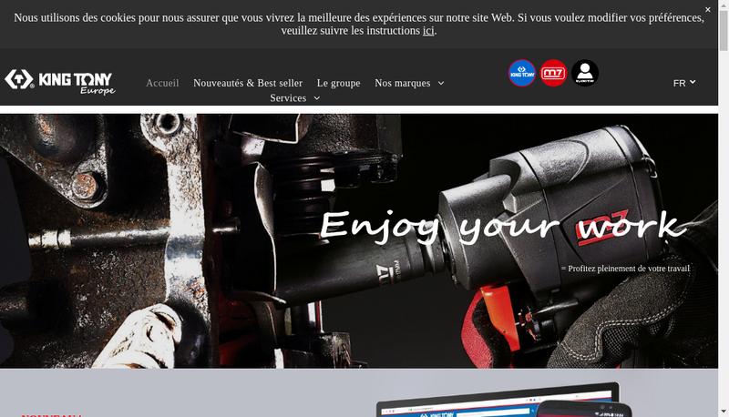 Capture d'écran du site de King Tony Europe