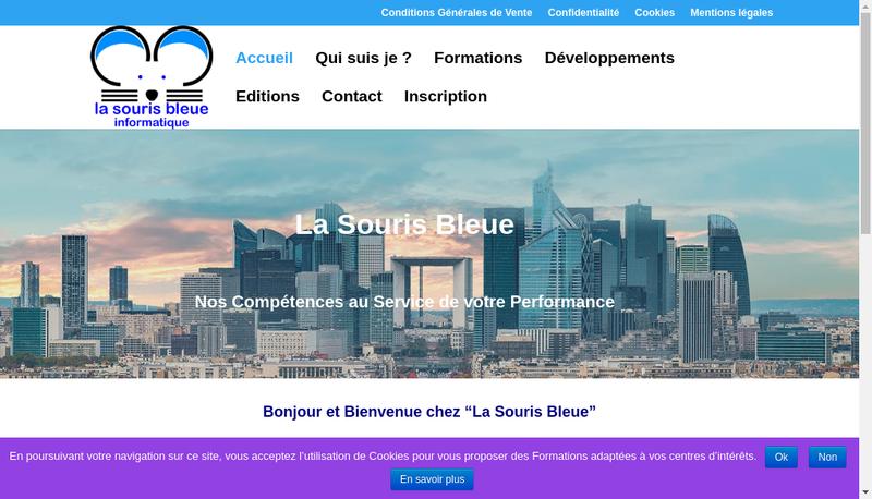 Capture d'écran du site de La Souris Bleue