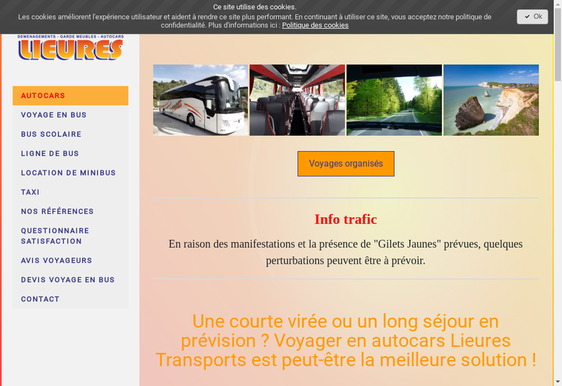 Capture d'écran du site de Transports Lieures