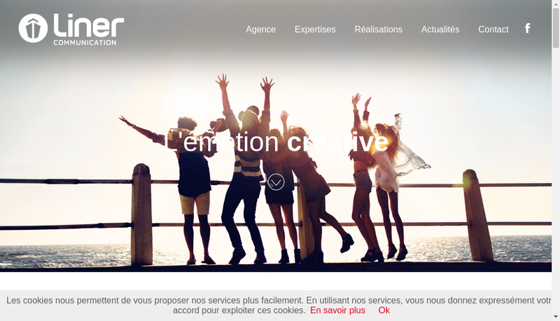 Capture d'écran du site de Liner Communication