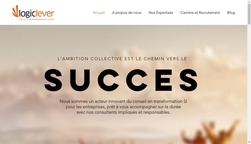 Capture d'écran du site de Logiclever
