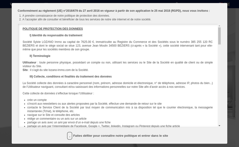 Capture d'écran du site de Sylvie Lozano Immo