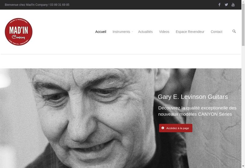 Capture d'écran du site de Magneto Guitars