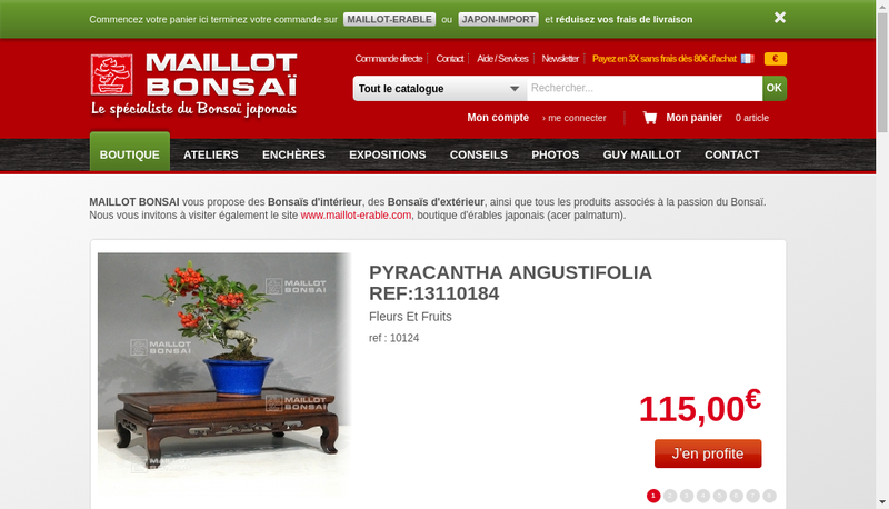 Capture d'écran du site de Maillot Bonsai
