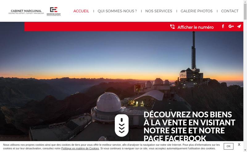 Capture d'écran du site de Geomontis
