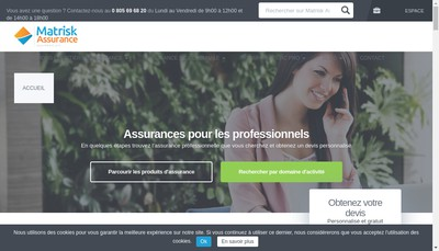 Site internet de Matrisk Group