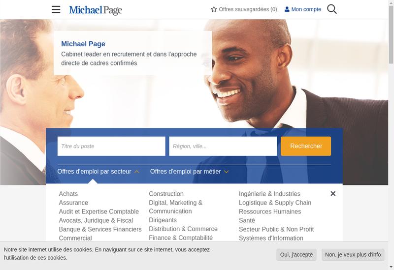 Capture d'écran du site de Michael Page Commercial