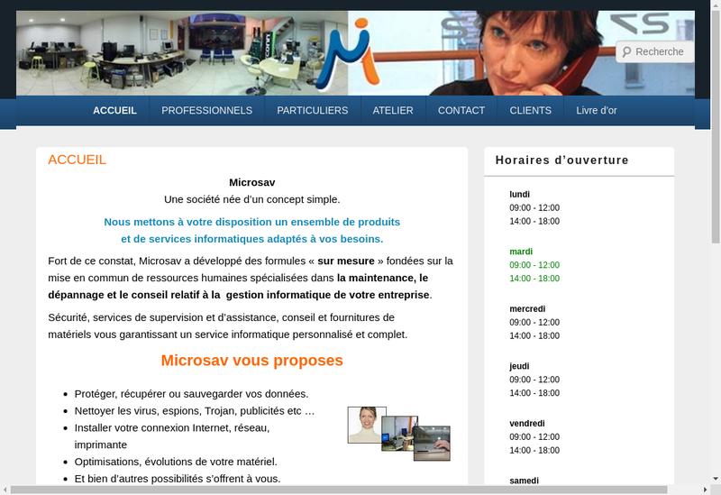 Capture d'écran du site de Micro Sav