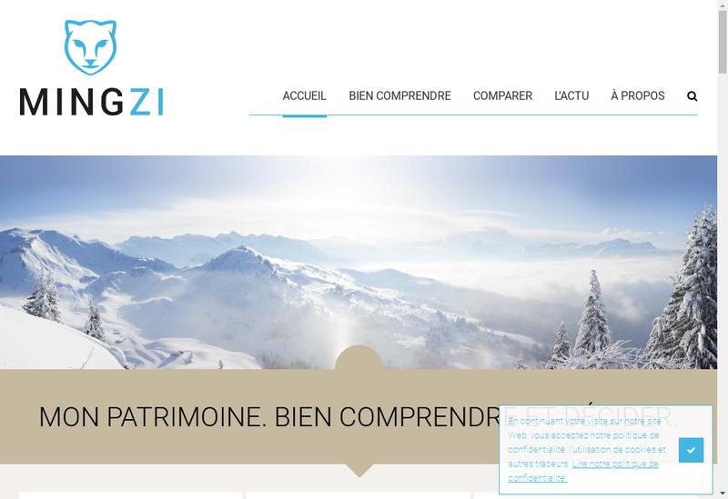 Capture d'écran du site de Mingzi