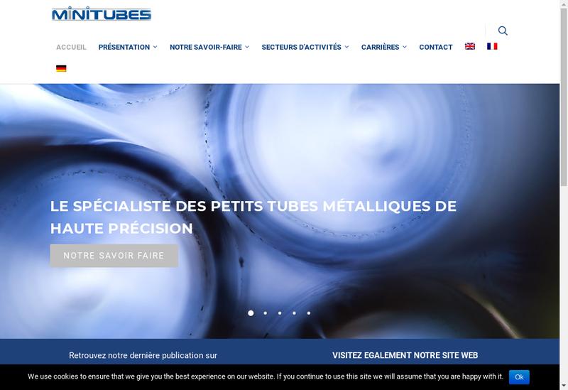 Capture d'écran du site de Minitubes