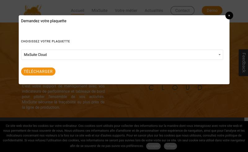 Capture d'écran du site de Mixsystems